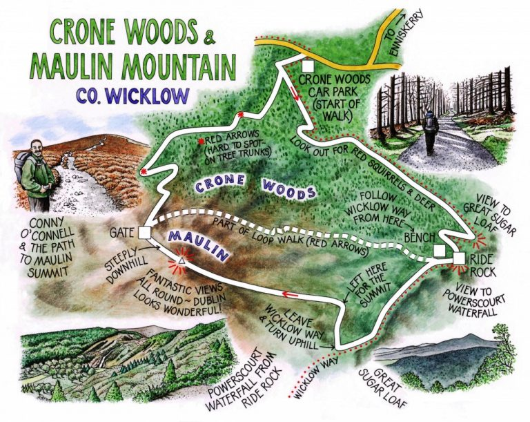 13 Crone Woods and Maulin Mountain